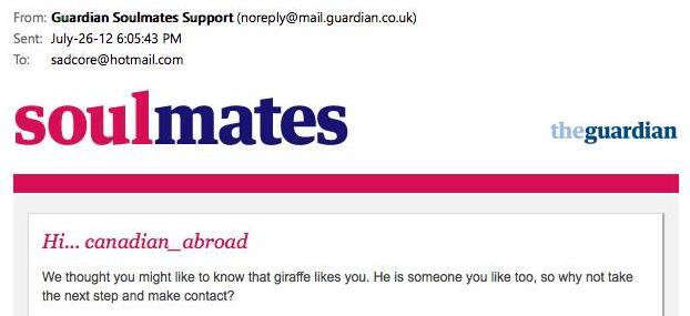 giraffe likes you
